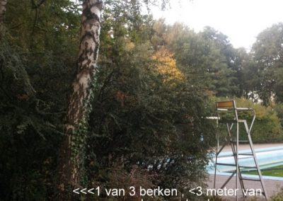 Bomen zwembad de Looermark